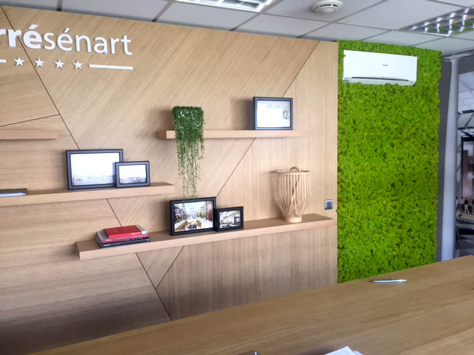 Mur concept, placage chène, mur végétal